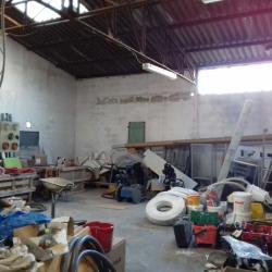 Vente Local d'activités Bouillargues 350 m²