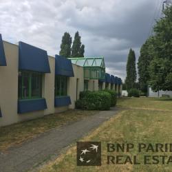 Location Bureau Herblay 683 m²