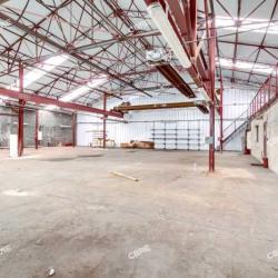 Vente Local d'activités Sucy-en-Brie 3062 m²