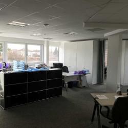Location Bureau Strasbourg 407,11 m²