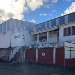 Location Entrepôt Ducos 140 m²