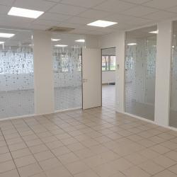 Location Bureau Castelnau-d'Estrétefonds 200 m²