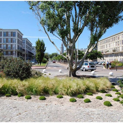 Location Local commercial Le Havre 30 m²