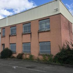 Vente Local d'activités Vénissieux 379 m²