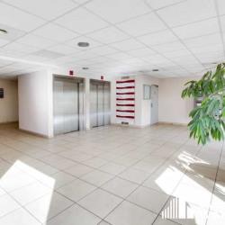 Location Bureau Marseille 2ème 238,33 m²