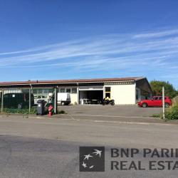 Vente Local d'activités Santes 283 m²