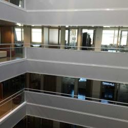 Location Bureau Vaulx-en-Velin 557 m²