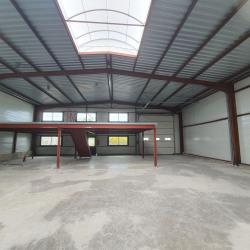 Location Local d'activités Vaux-le-Pénil 553 m²