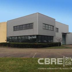 Vente Local d'activités Haguenau 494 m²