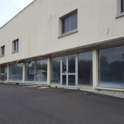 Location Local d'activités Saint-Domineuc 2000 m²