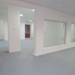 Location Local commercial Carcassonne 285 m²
