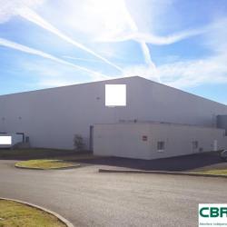 Location Entrepôt Lempdes-sur-Allagnon 6000 m²
