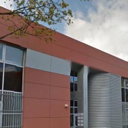 Location Local d'activités Gennevilliers 150 m²
