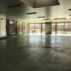 Vente Local commercial Pompertuzat 1000 m²
