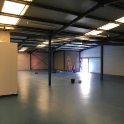 Vente Entrepôt Blanquefort 700 m²