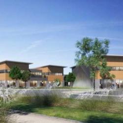 Location Local d'activités Saint-Cyr-l'École (78210)