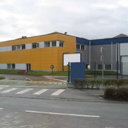 Location Local d'activités Villeneuve-d'Ascq 6524 m²