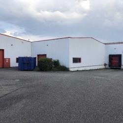Location Local d'activités Hœrdt 2384 m²