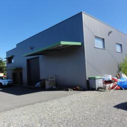 Vente Local d'activités Riom 460 m²
