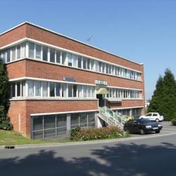 Vente Bureau Saint-Pol-sur-Ternoise 895 m²