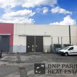 Location Local d'activités Fretin 480 m²