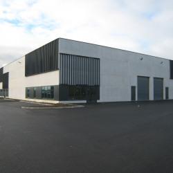 Vente Local d'activités Hallennes-lez-Haubourdin 2325 m²
