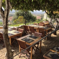 Vente Local commercial Porto-Vecchio 0 m²