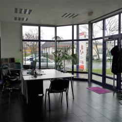 Location Local d'activités Souffelweyersheim 789 m²