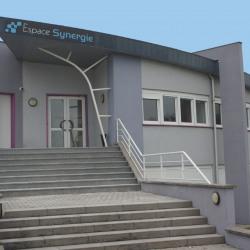 Vente Local d'activités Soufflenheim (67620)