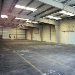 Location Local d'activités Boissy-sous-Saint-Yon 480 m²