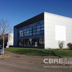 Location Bureau Mundolsheim 215 m²