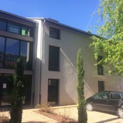 Location Bureau Lyon 8ème 49 m²
