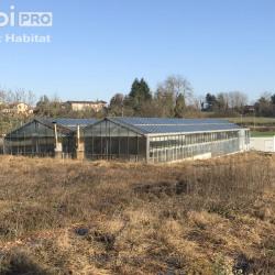 Location Terrain Frontenas 6449,24 m²