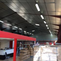Location Local d'activités Chassieu 550 m²