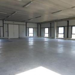 Location Local d'activités Rousset 840 m²