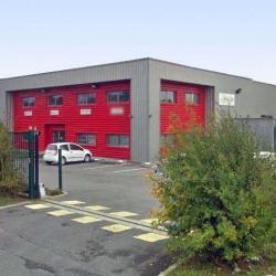 Location Local d'activités Saint-Martin-Boulogne 540 m²