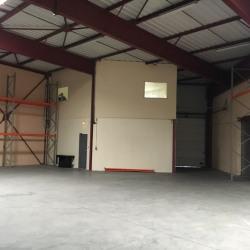 Location Local d'activités Plailly 724,1 m²