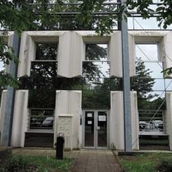 Location Bureau Croissy-Beaubourg 710 m²