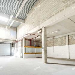 Location Local d'activités Villebon-sur-Yvette 8921 m²