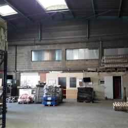 Location Local d'activités Gonesse 563 m²