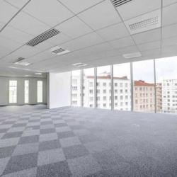 Location Bureau Lyon 7ème 1434 m²