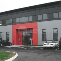 Vente Bureau Labruguière 481 m²