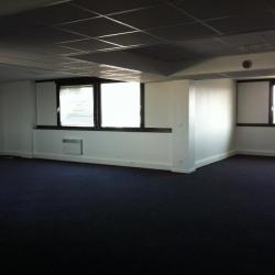 Location Bureau Saint-Quentin-Fallavier 433 m²