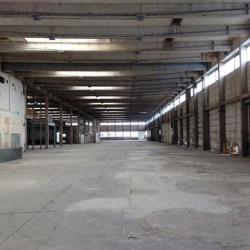 Vente Entrepôt Limoges 3000 m²