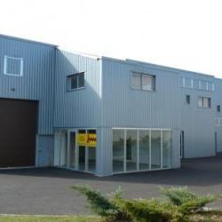 Location Local d'activités Villenave-d'Ornon 360 m²