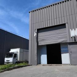 Vente Local d'activités Bondoufle 298 m²