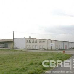 Vente Local d'activités Soufflenheim 5800 m²
