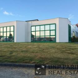 Location Bureau Cesson-Sévigné 200 m²