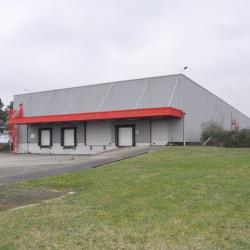 Vente Local d'activités Saint-Quentin-Fallavier 4689 m²
