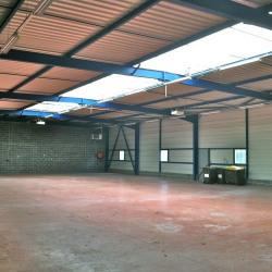 Location Local d'activités Somain 670 m²